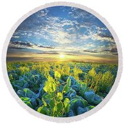 All Joined As One Round Beach Towel by Phil Koch