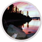 Round Beach Towel featuring the photograph All Life Is Precious by Sean Sarsfield