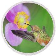 Allens Hummingbird And Anemone Round Beach Towel