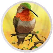 Allen's Hummingbird Round Beach Towel