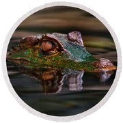 Alligator Above Water Reflection Round Beach Towel