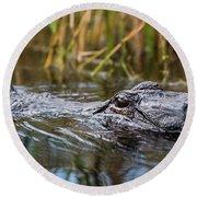 Alligator Closeup-2-0600 Round Beach Towel