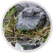 Alligator Closeup-0642 Round Beach Towel