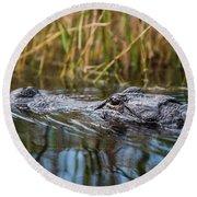 Alligator Closeup1-0600 Round Beach Towel