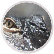 Alligator Eye Round Beach Towel