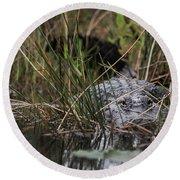 Alligator Lurks-0620a Round Beach Towel