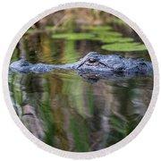 Alligator Swims-1-0599 Round Beach Towel