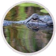 Alligator Swims-2-0599 Round Beach Towel