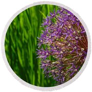Allium Explosion Round Beach Towel