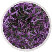 Allium Stars  Round Beach Towel