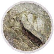 Camarasaurus Round Beach Towel