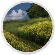 Almaden Meadows' Mustard Blossoms Round Beach Towel