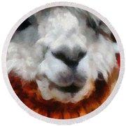 Alpaca Round Beach Towel by Michelle Calkins
