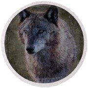 Alpha Wolf Portrait Round Beach Towel