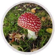 Amanita Mascara Round Beach Towel