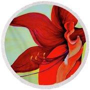 Amaryllis Blossom Round Beach Towel