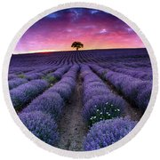 Amazing Lavender Field With A Tree Round Beach Towel