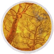 Amber Tree Abstract Round Beach Towel