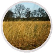 Amber Waves Of Grain Round Beach Towel