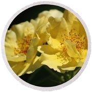 Amber Yellow Country Rose Round Beach Towel