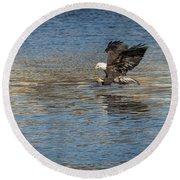 American Bald Eagle 2017-10 Round Beach Towel