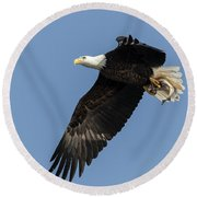 American Bald Eagle 2017-4 Round Beach Towel