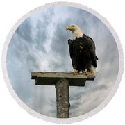 American Bald Eagle Perched On A Pole Round Beach Towel