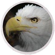 Round Beach Towel featuring the digital art American Bald Eagle Portrait 2 by Ernie Echols