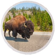 American Bison Sharing The Road In Yellowstone Round Beach Towel by John M Bailey