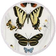 American Butterflies Round Beach Towel