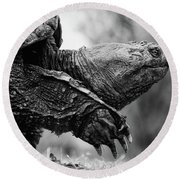 American Gamera Round Beach Towel by Neil Shapiro
