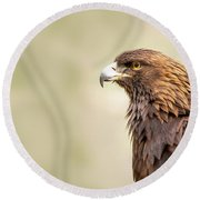 American Golden Eagle Round Beach Towel