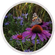 American Painted Lady On Cone Flower Round Beach Towel