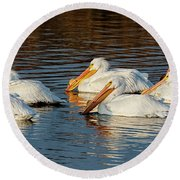 Round Beach Towel featuring the photograph American Pelicans - 02 by Rob Graham
