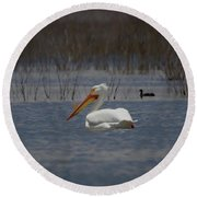 American White Pelican Searching Da Round Beach Towel by Ernie Echols