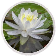 American White Water Lily Round Beach Towel