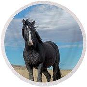 American Wild Horse Round Beach Towel