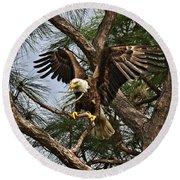 America's Bird Round Beach Towel