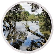 Round Beach Towel featuring the photograph Amidst The Mangroves by Dianne  Connolly