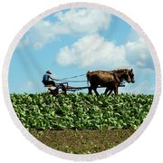 Amish Farmer With Horses In Tobacco Field Round Beach Towel