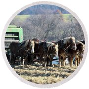 Amish Haymaker In Lancaster County, Pennsylvania Round Beach Towel