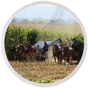 Amish Men Harvesting Corn Round Beach Towel