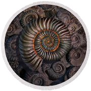Ammonite 1 Round Beach Towel