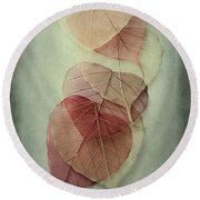 Among Shades Round Beach Towel