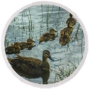 Round Beach Towel featuring the photograph Among The Reeds by Mark Blauhoefer