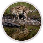 Amur Leopard Reflection Round Beach Towel