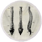 Anatomical Spine Medical Art Round Beach Towel