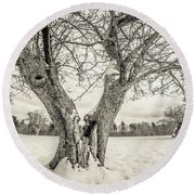 Ancient Apple Trees In Winter Round Beach Towel