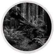 Round Beach Towel featuring the photograph Ancient Forest Black And White by TL Mair