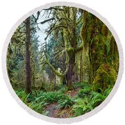 Ancient Forest Panorama Round Beach Towel